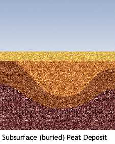 Illustration showing subsurface (buried) peat deposit