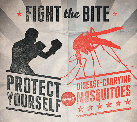 Fight the Bite: Protect yourself against disease-carrying mosquitoes