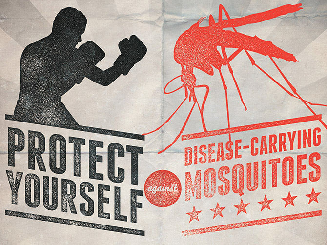 Protect yourself against disease-carrying mosquitoes